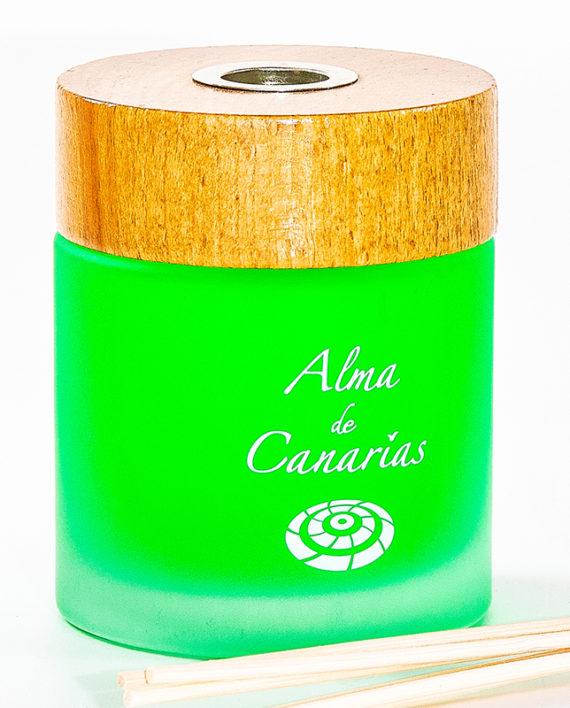 Alma de Canarias garden 200